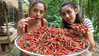 Yummy cooking chili paste recipe  Cooking skill