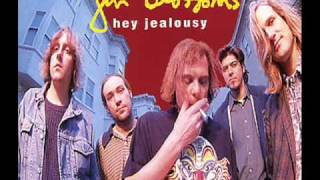 Gin Blossoms Hey Jealousy Live At Shooters