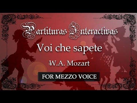 Voi che sapete - W. A. Mozart (Karaoke - Original Key: B-flat major)