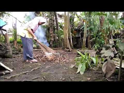 Ibu Rumah Tangga Desa Berdaya. Perjalanan Blogger Kampung Menuju Kesuksesan