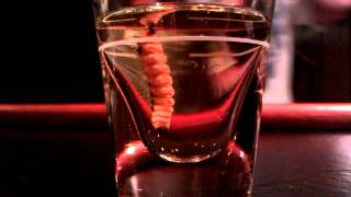 Tequila Worm Shot!!!!!