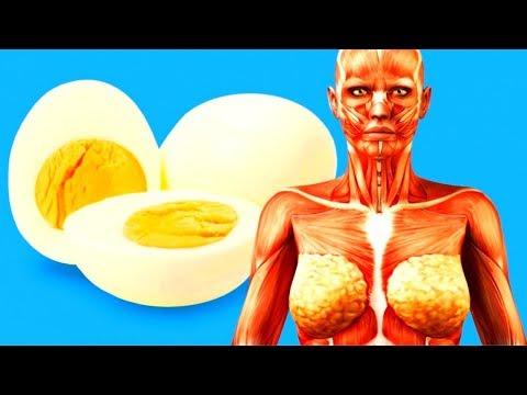 Qué Pasará Con Tu Cuerpo Si Empiezas A Comer 2 Huevos Al Día