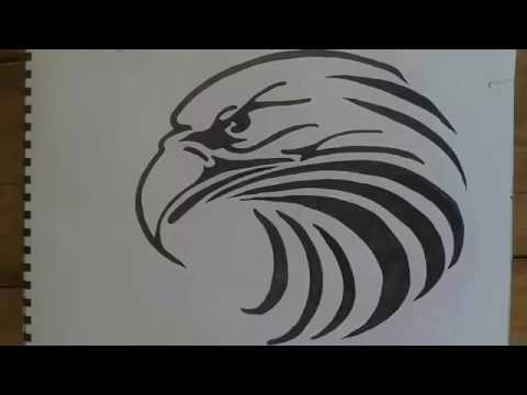 How To Draw Eagle Tattoo طريقة رسم نسر Drawing Eagle رسم سريع