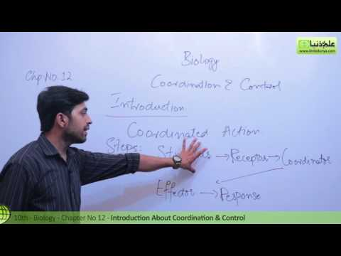 Introduction about Coordination and Control