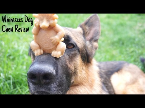 review:-whimzees-dog-chews-xl-hedgehog-dog-treat