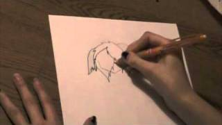 how to draw Chibi.:ASL project:.