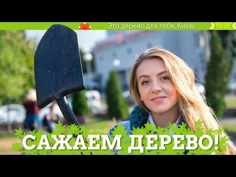 Лето Господне - Православная электронная библиотека читать