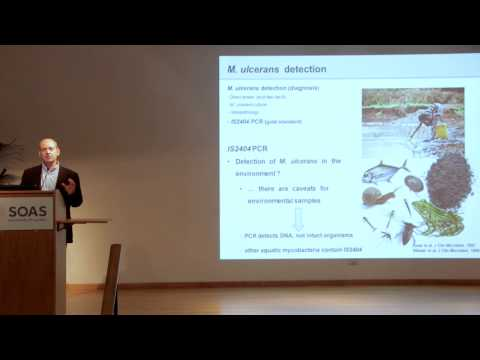 Jorge Pedrosa - Role of water in the transmission mechanisms of Buruli Ulcer