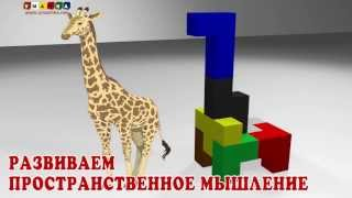 Развиваем пространственное мышление с играми по методике Никитиных (1)