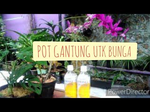 Membuat Pot Bunga Gantung Sederhana Dari Botol Bekas Wahyudi Yudi Youtube