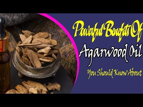 powerful-benefits-of-agarwood-oil-you-should-know-about-|-useful-info
