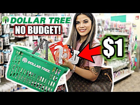 DOLLAR TREE GIRLY NO BUDGET SHOPPING SPREE