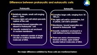 Difference Between Prokaryotic and Eukaryotic Cells