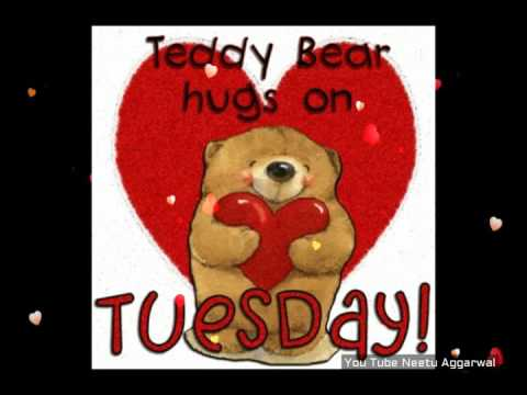 Happy Tuesday Greetings/Quotes/Sms/Wishes/Saying/E Card/Wallpapers/Happy  Tuesday Whatsapp Video