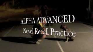 Alpha Advanced Dog Training 6-3-13