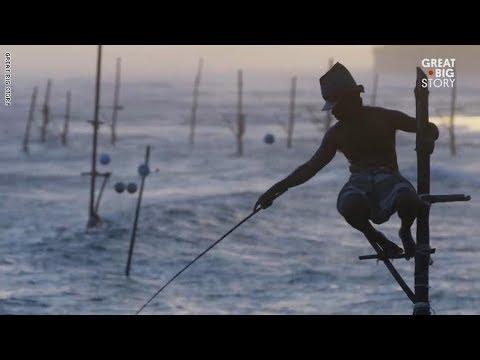 أغرب طريقة لصيد السمك في سريلانكا  - نشر قبل 3 ساعة