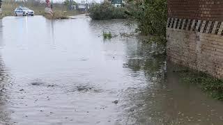 Il soccorso alla Bufalara con l'auto immersa nel pantano d'acqua