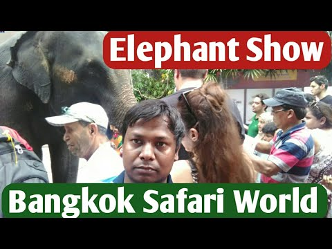 Elephant Show in Safari World- Playing Football and Doing Massage,
