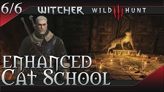 The WItcher 3: Wild Hunt Enhanced Cat (Feline) School Gear Set
