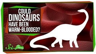 Could Dinosaurs Have Been Warm-Blooded?