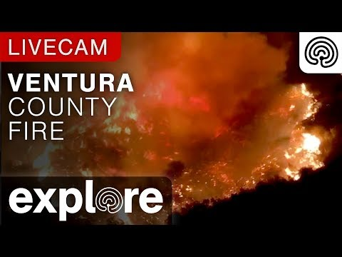 Southern California Fire Relief powered by Explore.org