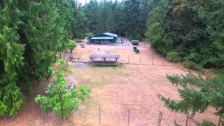 27 Acres For Sale With Successful Dog Business On Vancouver Island