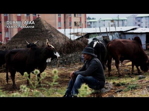 Kamaal Ibraahim - Dubbii Lafaa...  ft. Shukri Jamaal - Official Afan Oromo Music Video 2016