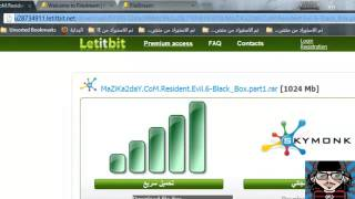 How To Download From LetitBitnet For Free