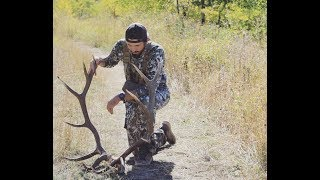 Montana Elk Hunt Part 2: (Big Archery Bull Elk 7x7)
