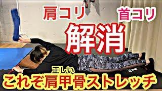 【宅メンテ】自粛中の肩・首こり解消!正しく肩甲骨を動かすには必見!