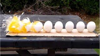 Egg Destruction in Slow Motion