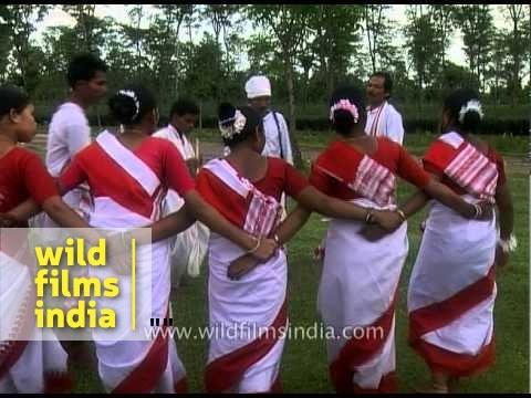 Jhumur dance of the Tea Tribe - Assam
