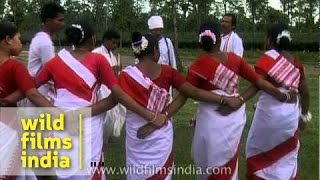 Jhumur dance of the Tea Tribe - Assam