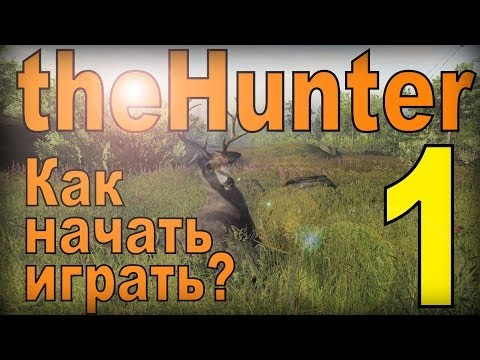 the Hunter - Как начать играть. #1