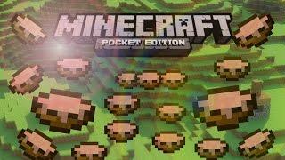 [0.9.5] How to get Infinite Mushroom Stew!! (Mooshroom Glitch) - Minecraft Pocket Edition