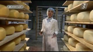 Агросектор. Как готовят голландский сыр