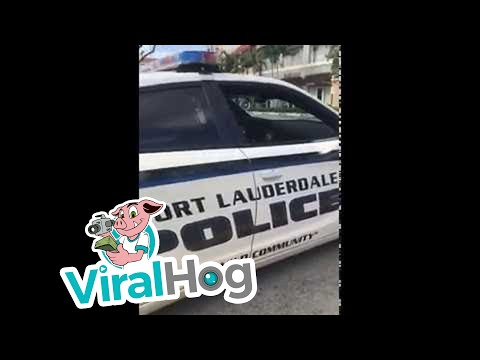 Ft. Lauderdale Police and Parking Garage Incident || ViralHog