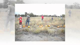 Wichita Pumpkin Patch | Mr. Gourdman