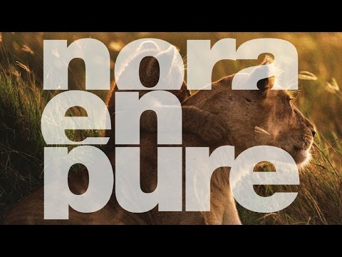 Nora En Pure - True (Original Mix)