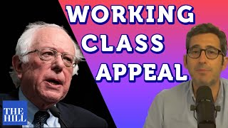 Majority Report's Sam Seder explains Bernie Sanders' working class appeal