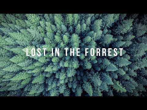 LOST IN THE FORREST - ADVENTURES at Alpine National Park