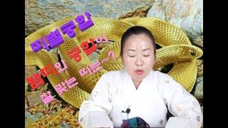 [탈북만신옥화보살]뱀띠와 잘 맞는 띠!! 상극인 띠도 …