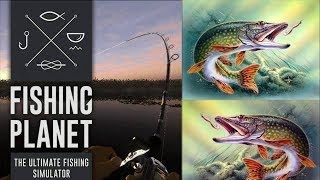 Fishing Planet (Обнова) #8