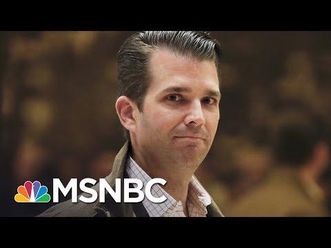 President Donald Trump Jr's Hard-To-Believe Memory Lapses | The Last Word | MSNBC