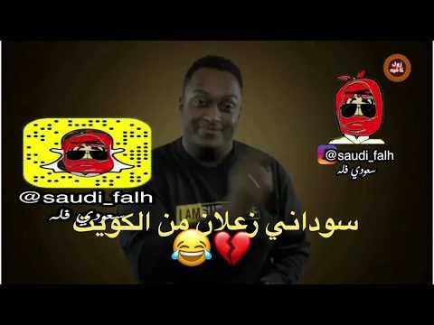 رد سوداني زعلان من الكويت | بلوك غشمرة |زول كافية thumbnail