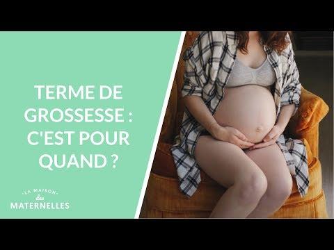 Terme De Grossesse : C'est Pour Quand ? - La Maison Des Maternelles #LMDM