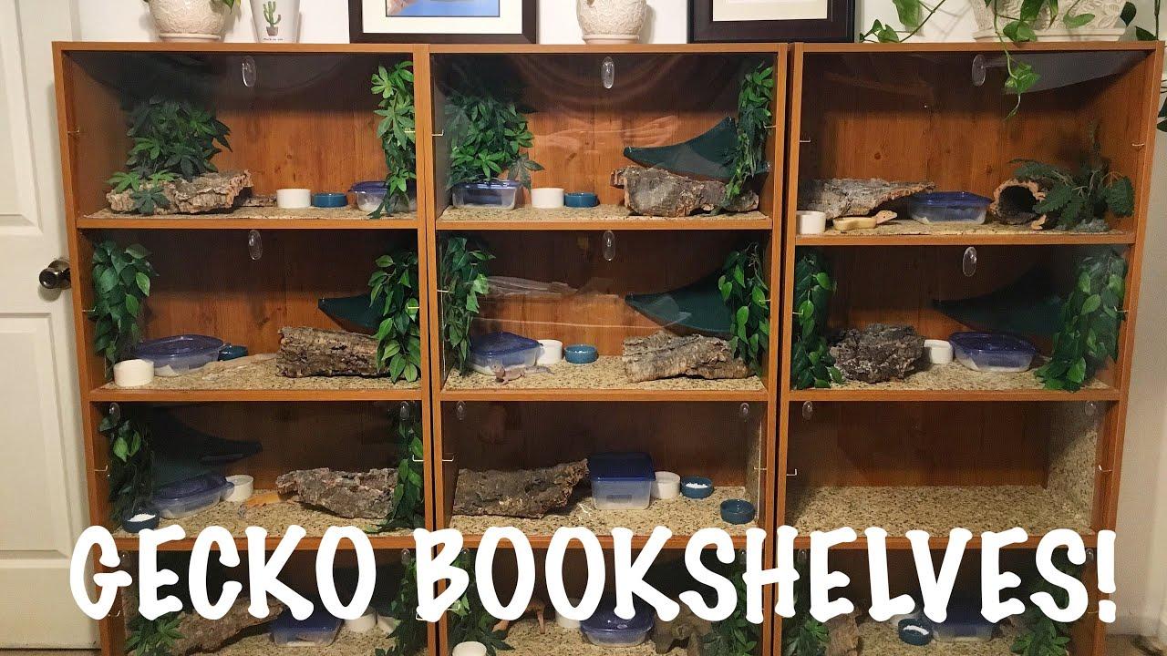Diy Bookshelf Built In