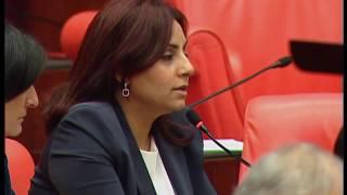Selina Doğan, Hıristiyan mezarlıklarına yapılan saldırıları sordu
