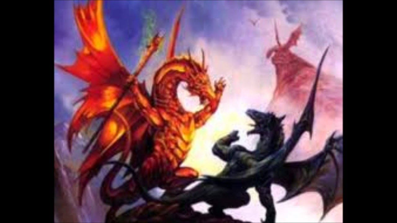 Drachen Bilder