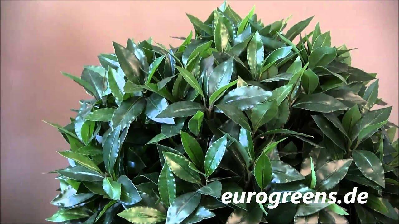 eurogreens kunstpflanze lorbeer kugel youtube. Black Bedroom Furniture Sets. Home Design Ideas